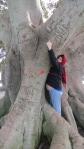 tree hugger(s)